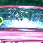 Okres próbny - zielony listek